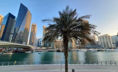 Аренда Вилла Dubai Marina