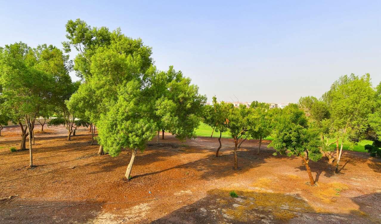Аренда Вилла Jumeirah Golf Estate