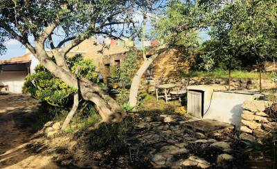 Продажа Ферма Sant Miquel de Balasant