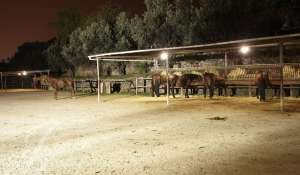 Продажа Конно-спортивный комплекс Barcelona