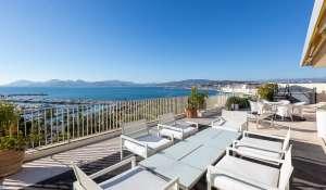Продажа Пентхаус Cannes