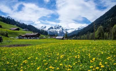 Продажа Участок на застройку Gstaad