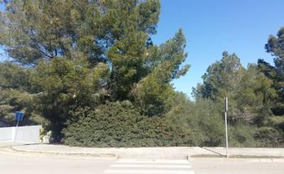 Продажа Участок на застройку Santa Ponsa