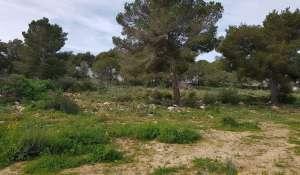 Продажа Участок на застройку Sol de Mallorca