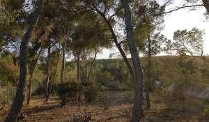 Продажа Участок земли Cala Vinyes