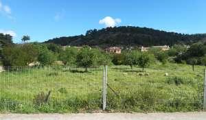 Продажа Участок земли Calvià