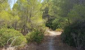 Продажа Участок земли Santa Ponsa