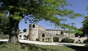 Продажа Винодельческое поместье TAVEL
