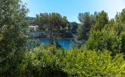 Сезонная аренда Апартаменты Saint-Jean-Cap-Ferrat
