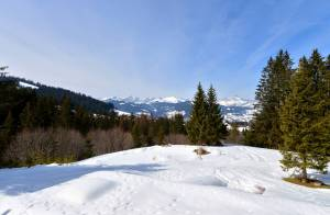 Сезонная аренда Шале Megève